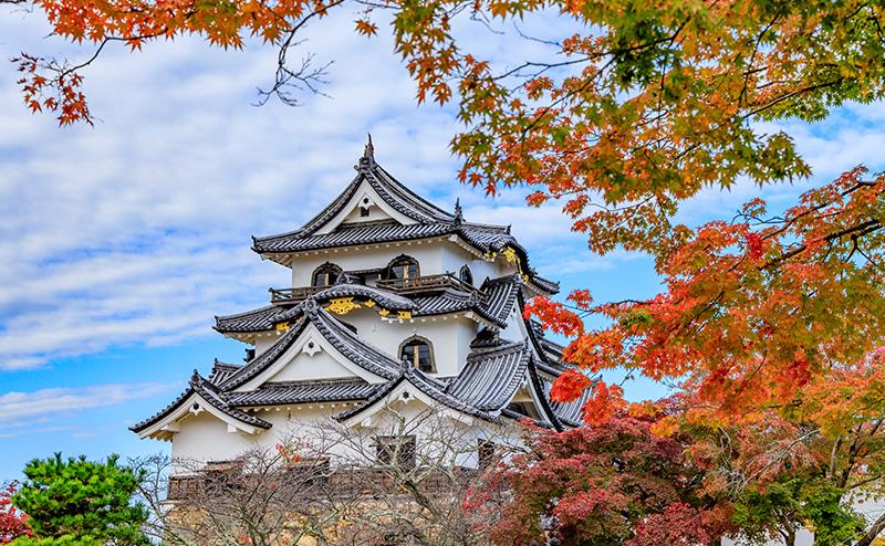 当サロンの詳しい情報とアクセス方法は、こちらのページでご案内いたします。 彦根城から徒歩10分以内という好立地で、地元の方だけでなく、観光でお越しになった方にもご利用いただいております。